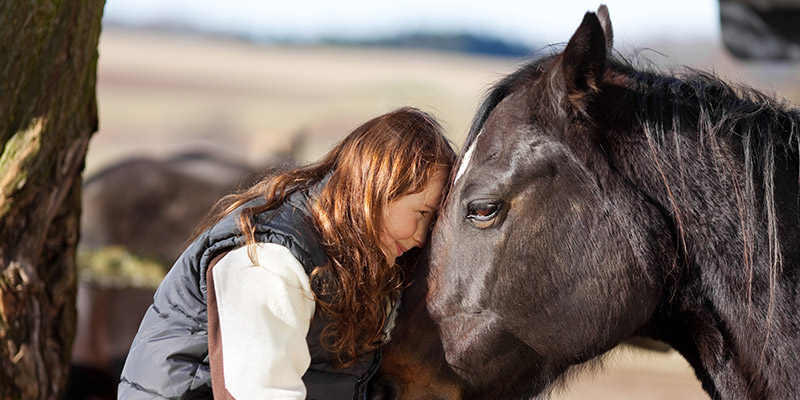 Frau Pferd 800x400 - Weiblichkeit - Pferde